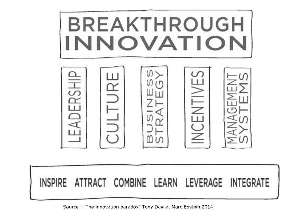 The innovation Paradox approach_Tony Davila Marc Epstein 2014